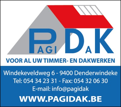 Timmer en Dakwerken Pagi Dak